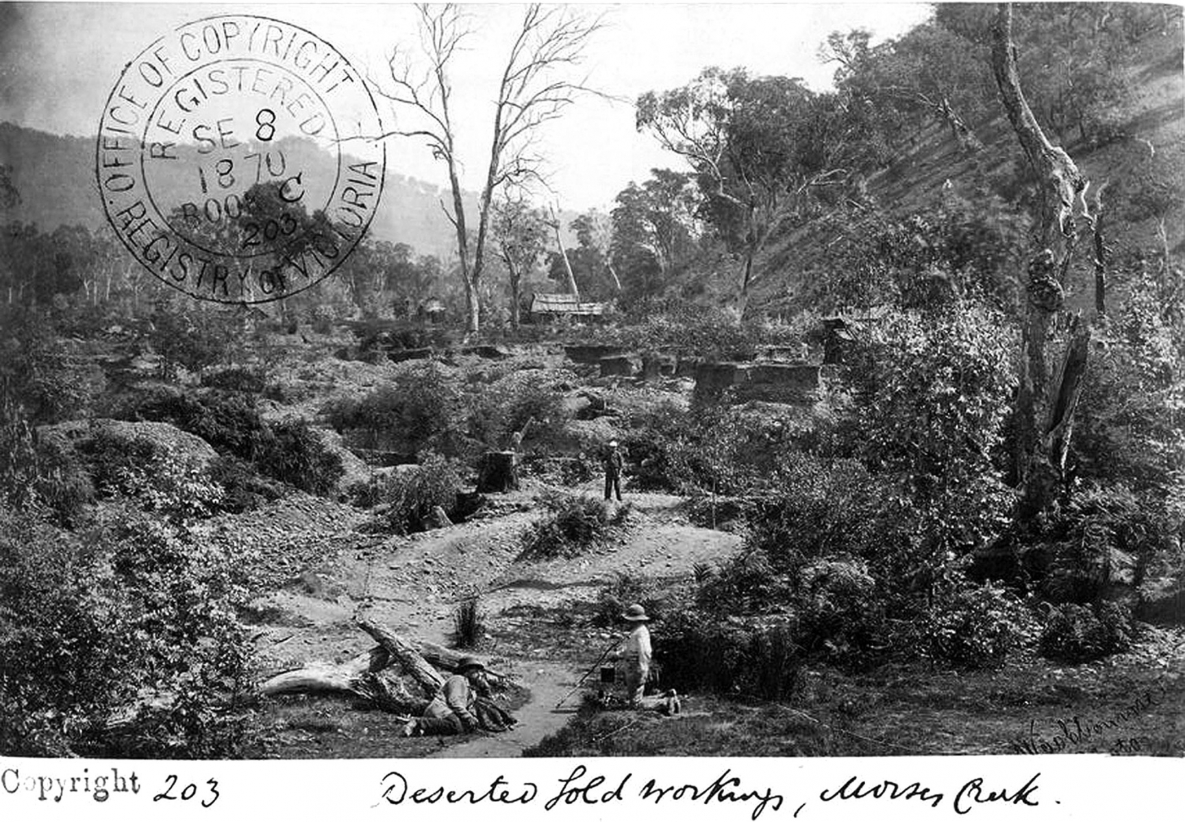 Morses Creek